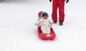 Passenger Spills Out of Sled