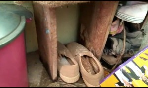 Watch your step! Man finds 5-foot-long snake hiding in his shoe