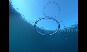 Mesmerising footage of bubble rings colliding in slow motion