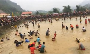 Daring festival-goers catch fish by hand in Vietnam