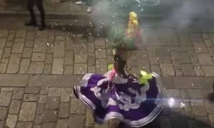 Doggy Dances During Street Festival