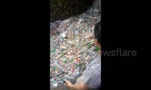 River of trash shows the insane scale of Indonesia's plastic pollution problem