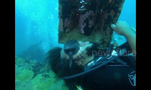 Ocean dentistry? Diver gets teeth brushing from cleaner shrimp