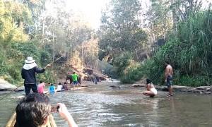 Elephant Flips Raft