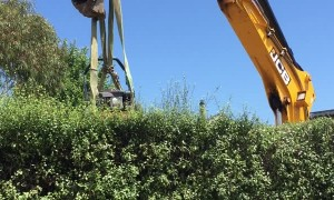 More Than One Way to Trim a Hedge