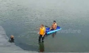 Rescue worker swims across deep reservoir to save drowning dog