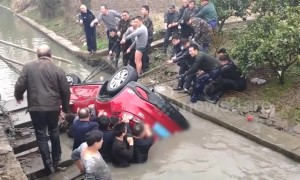 Good Samaritans rescue driver trapped in car flipped into river