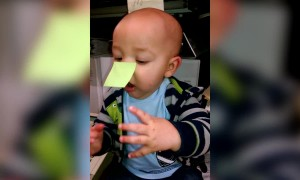 Cute Baby has Something on his Nose!