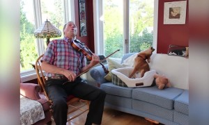 Puppy and Owner make Music Together!