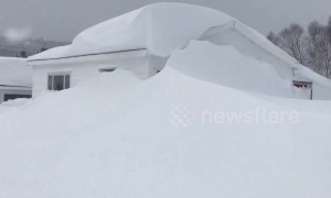 Snow swallows homes whole during Newfoundland winter