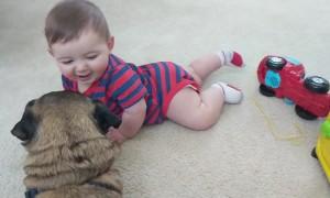 Babies LOVE Dogs!