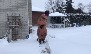 Funny T-Rex Winter Shenanigans