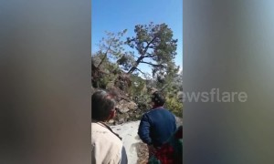 The hills are alive! Landslide footage shows hillside slowly swallow road in north India