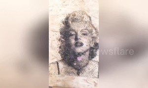 Chinese artist creates portrait of Marilyn Monroe using over 9000 screws