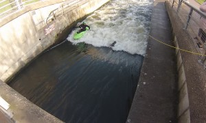 Goose Stuck in White Water Course