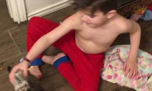 Pet Wallaby Hops After Kids