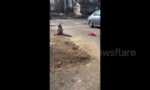 After a long winter this three-year-old was shocked to hear the birds singing