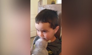 Kid gets Caught in Candy Lie!