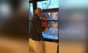 'This is the closest they'll get to grandchildren!' Elderly man shows house garden to daughter's dog