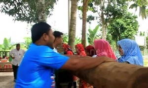 Traditional sugar production in Indonesia uses tree trunks to grind the cane