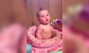 Baby Can't Stop Laughing at a Bucket on her Head