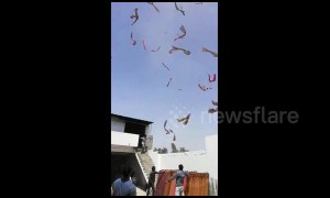 Hundreds of saris sent flying by high winds in eerie clip from west India