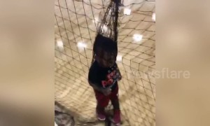 Hilarious moment one-year-old gets caught in net at Kentucky basketball game