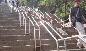 Clever monkey slides down railings as shortcut at Nepal temple