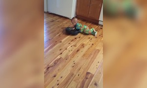 A Baby Boy Rides On A Roomba Vacuum