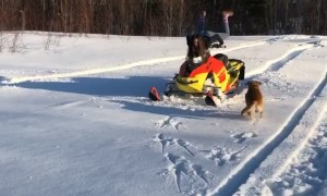 Snowmobile Scorpion Flip Fail