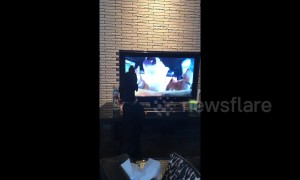 Doggy in Japan makes ear-splitting howl at dogs on TV screen
