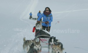 Fjällräven Polar event sees over 200 sled dogs travel 300km through Scandinavia