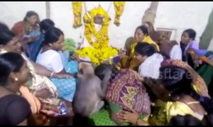 Heartwarming moment monkey consoles mourners at funeral in southern India