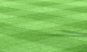 Phillies Fan Runs onto Field