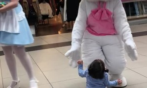 Little Girl Loves Meeting Easter Bunny