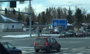 Moose Casually Crosses Busy Street