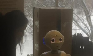 Ticklish Robot Interacts with Crowd