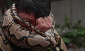 Brave Thai fireman shows how to escape a deadly python attack
