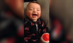 Baby Has the Cutest Laugh!