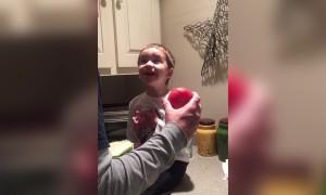 Tomato, Potato!