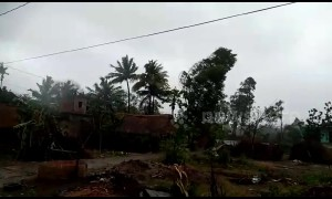 High winds from Cyclone Fani cause havoc in eastern Indian village
