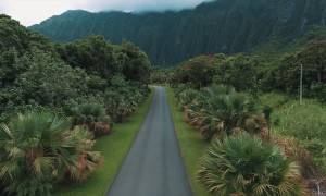 Relaxing Run Through Scenic Hawaii
