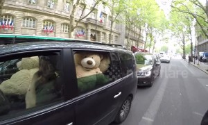 Bear-ly believable! Car full of giant teddies spotted on road in central Paris