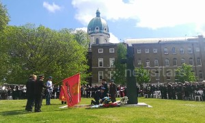 People gather at London's Imperial War Museum to commemorate Victory Day