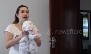 Baby thrown at mother in husband's elaborate  prank