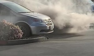 Suspicious Possum Walks Away from Car Fire