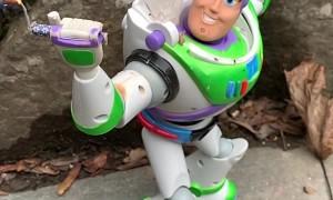 Buzz Gives the Bird