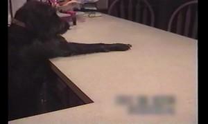 Throwback Clip: Smart Pup Loves his Treats!
