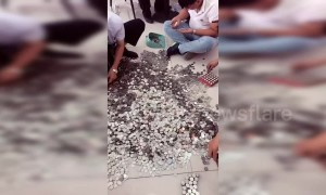 Chinese man uses 66 bags of coins to pay for car