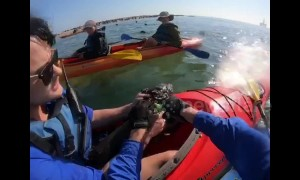 Kayakers save helpless seal pup entangled in netting off Namibia